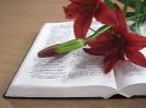 Библия и лилии